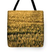 Wheat Beards Tote Bag