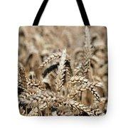 Wheat Close Up Summer Season Tote Bag