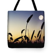 Wheat Field, Ireland Wheat Field And Tote Bag