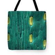 Wheat Leaf Stomata, Sem Tote Bag