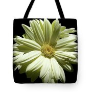 Wheel Of Life Tote Bag