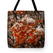 When Fall Meets Winter Tote Bag