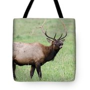 When I'm Calling You... Tote Bag