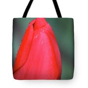 When Sorrow Like Sea Billows Roll... It Is Well With My Soul Tote Bag