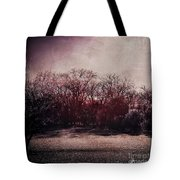 When Time Freezes Tote Bag