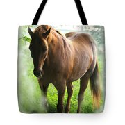 When You Dream Of Horses Tote Bag