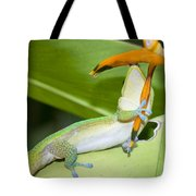 When You Love Something...this Much Tote Bag