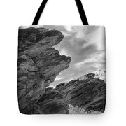 Where Andreas Meets Murray Bw 3 Tote Bag