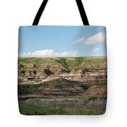 Where Dinsosaurs Once Roamed Tote Bag
