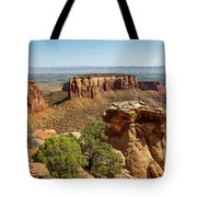 Where Eagles Soar Tote Bag