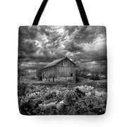 Where Ghosts Of Old Dwell And Hold Tote Bag