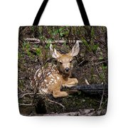 Where Mother Said Stay Tote Bag