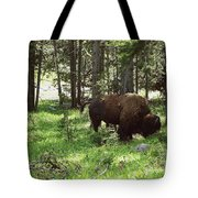 Where The Bison Roam Tote Bag