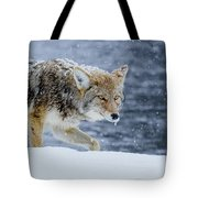 Where The Coyote Walks Tote Bag