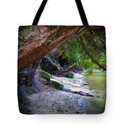 Where The Forest Meets The Sea Tote Bag