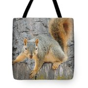 Where's The Nuts? Tote Bag
