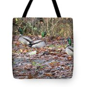 Which Way Is It Anyway Tote Bag