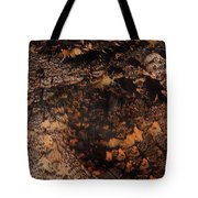 Whip-poor-will Feathers Tote Bag