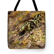 Whip Tailed Wasp Tote Bag