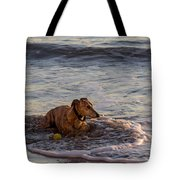 Whippet Cooling Off Tote Bag