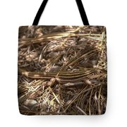 Whiptail Lizard Tote Bag