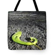 Whirly-gigs On The Path Tote Bag