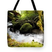 Whiskey Bend Trail  Tote Bag