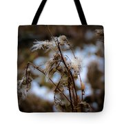 Whisp Of Winter Tote Bag