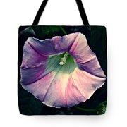 Whispered Glory Tote Bag