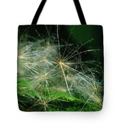 Whispy Seeds Tote Bag