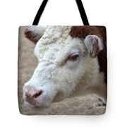 White And Brown Heifer Dairy Cow Tote Bag