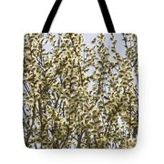 White And Fluffy Blooms. Tote Bag