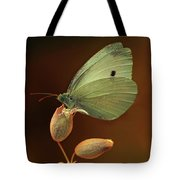 White And Green Butterfly On Dried Flowers Tote Bag
