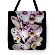 White And Magenta Orchids Tote Bag