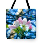 White And Pink Apple Blossoms Against A Blue Sky Tote Bag