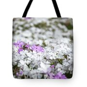 White And Pink Flowers At Botanic Garden In Blue Mountains Tote Bag