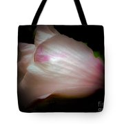 White And Pink Rose Of Sharon Tote Bag