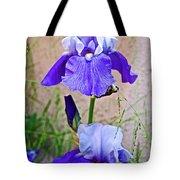 White And Purple Irises At Pilgrim Place In Claremont-california- Tote Bag