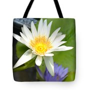 White And Purple Lotus Flowers At Golden Mount Tote Bag