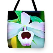 White And Purple Orchid In Greenhouse At Pilgrim Place In Claremont-california Tote Bag