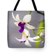 White And Purple Orchid Tote Bag