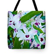 White And Purple Orchids In Greenhouse At Pilgrim Place In Claremont-california Tote Bag