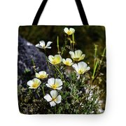 White And Yellow Poppies 1 Tote Bag