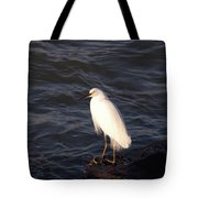 White As Snow Tote Bag