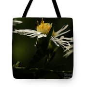 White Aster Tote Bag