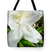 White Azalea Flower 9 Azaleas Raindrops Spring Art Prints Baslee Troutman Tote Bag