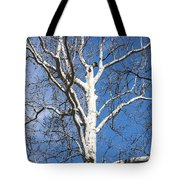 White Bark Tote Bag