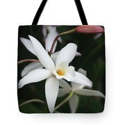 White Beauty Dove Tote Bag