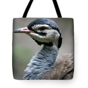 White Bellied Bustard Tote Bag