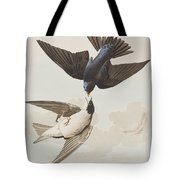 White-bellied Swallow Tote Bag